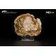 Legno fossile silicizzato (opale xiloide) - VGT A 46