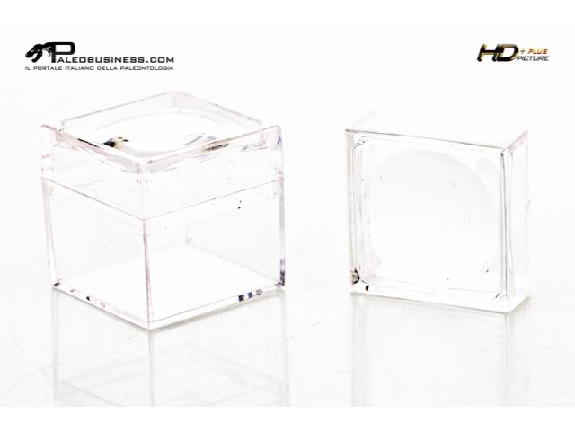Box con lente 3x